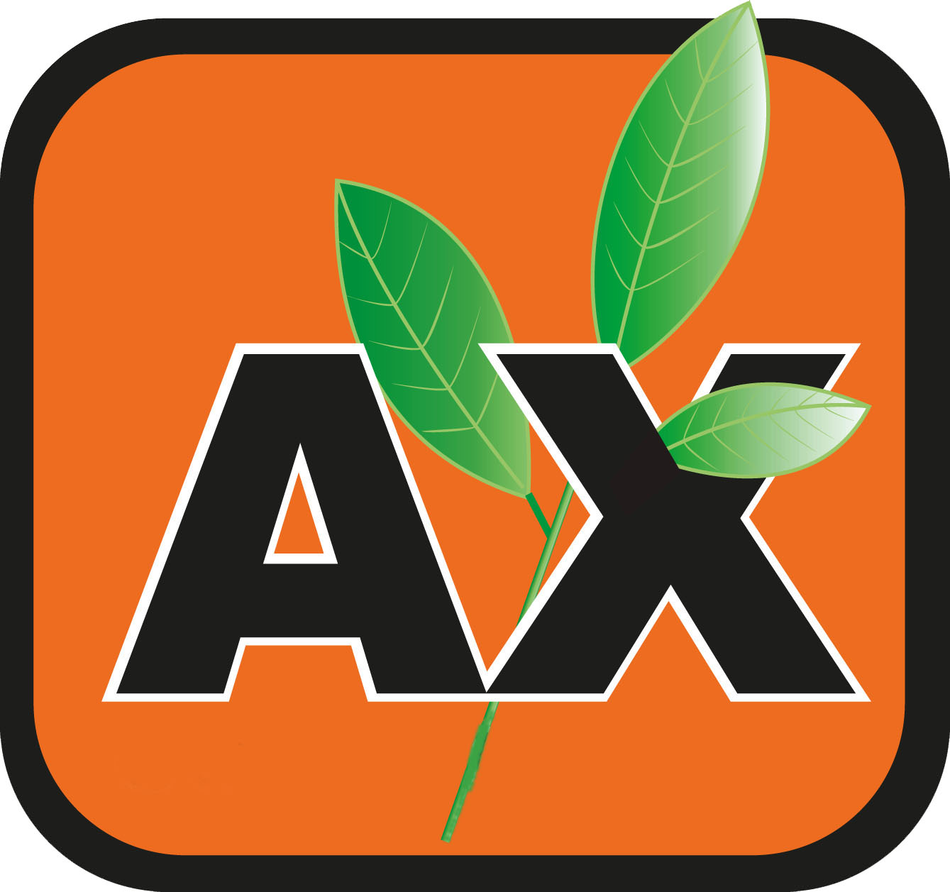 AxConsulting